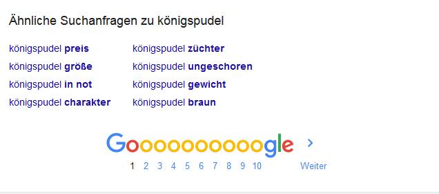 Google ist Dein Freund auf e-learn-biotec.de